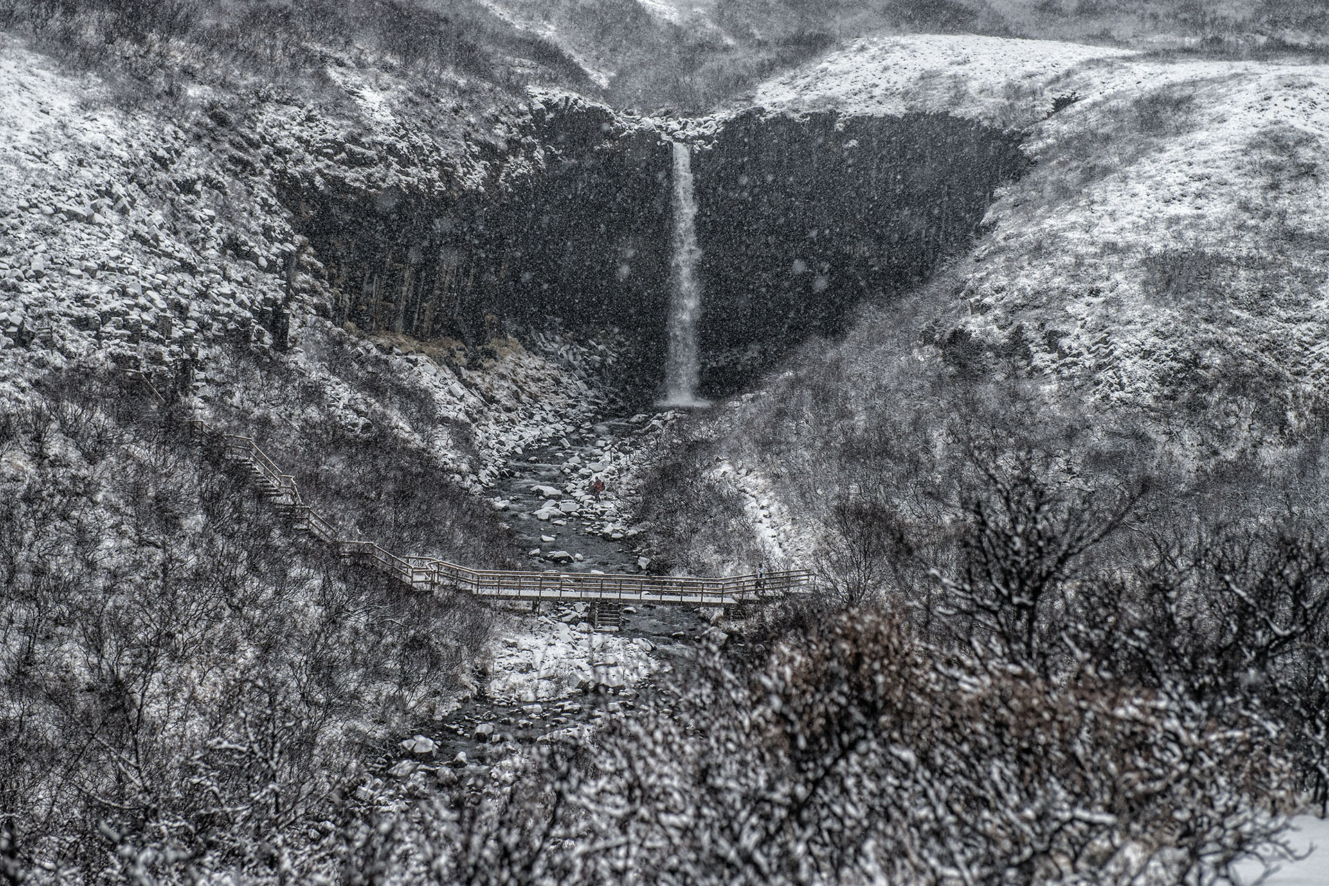 Islanda, neve a Svartifoss - Iceland, snowing on Svartifoss - Images of Iceland in winter time